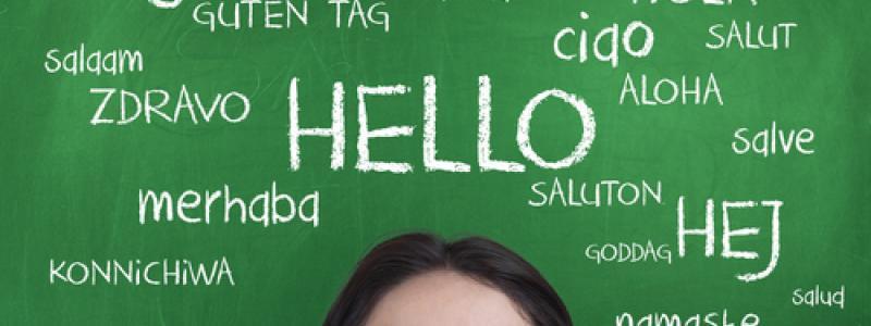 Here Comes Linqapp: A Crowd-Sourced Language Translation App